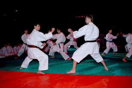 В Курске пройдет фестиваль борьбы